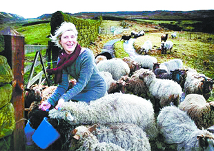 SHEAR HEAVEN: Beate Kubitz tending her sheep on the hills above Todmorden