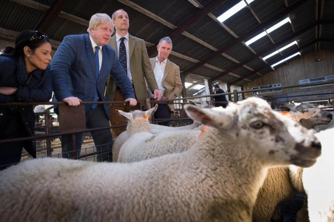 Boris Johnson tours Gisburn cattle auction in Clitheroe during the 2016 Brexit referendum campaign with Nigel Evans on the far right