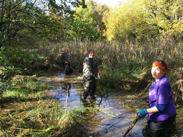Volunteers in the sun at Plantation Pond, Accrington