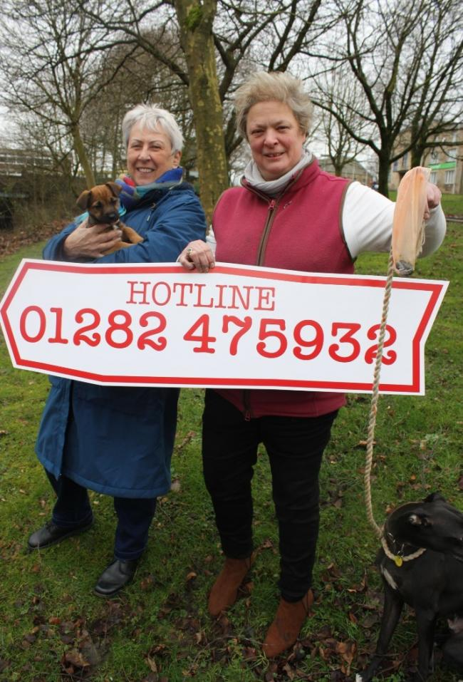 Burnley Council has launched a dog fouling hotline.