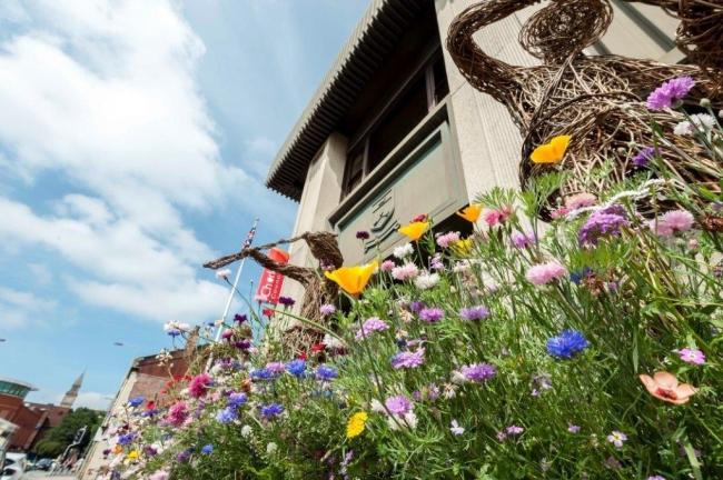 Wildflower meadows are coming to Chorley