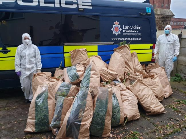 Police in Darwen have dismantled a cannabis farm