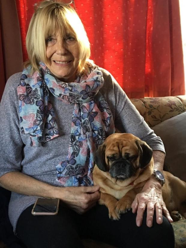 Lancashire Telegraph: Sandra Rolfe and her Crossbreed Penny, a mix of Pug and King Charles Spaniel. Picture: Vets Now