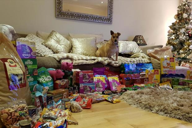 Last years donations to Santa Paws