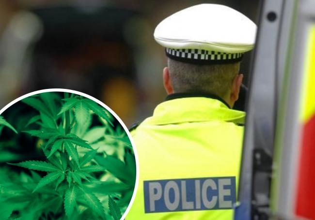Five people have been arrested as officers are dismantling the cannabis grow in Bacup