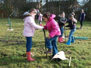 Children from Manor Road school plant the trees