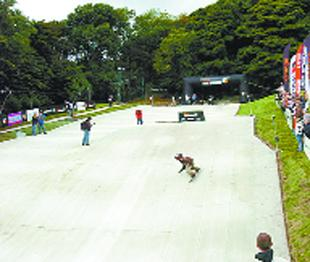 Ski Rossendale could be in line for £500,000 revamp