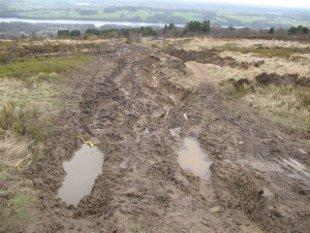 RUTS: Some of the damage to footpaths