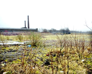 WASTELAND The site at Harle Syke, near to Queen Street Mill, earmarked for 120 homes.