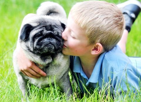 TOGETHER Levi Elliott with pug Oliver