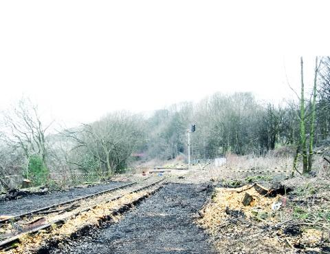 CLEARED Vegetation is cut back on the Todmorden Curve