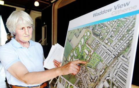 VITAL INFORMATION Sylvia Bolton (above) has a good look at the detailed plans at the exhibition.