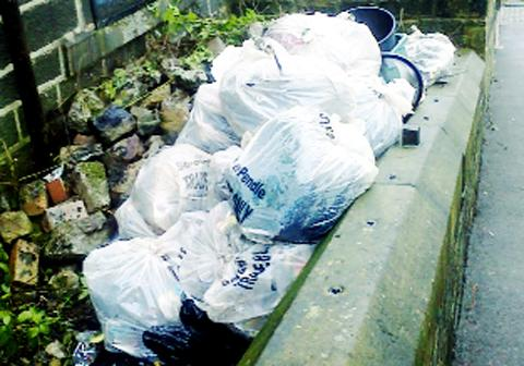 Some of the rubbish dumped in Colne