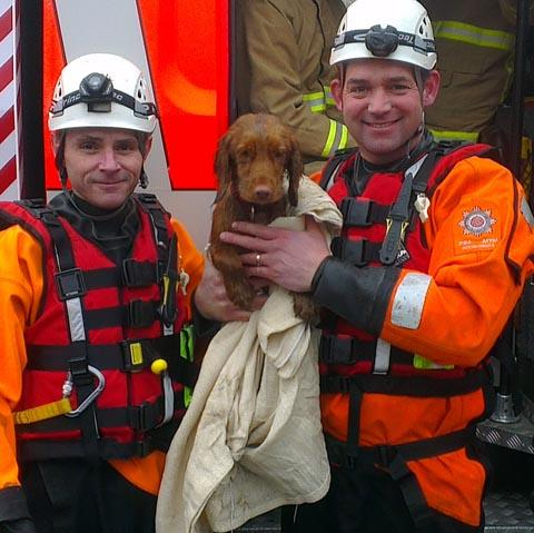 Firefighters with the rescued puppy