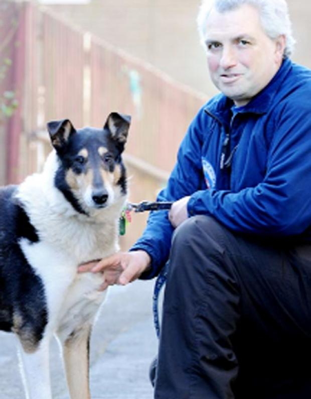 Finn with handler Stephen Garofalo