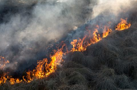 Burning grass on the moors. Photo: John Lenehan
