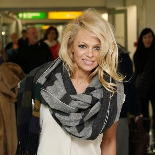 Pamela Anderson has married to Rick Salomon for the second time