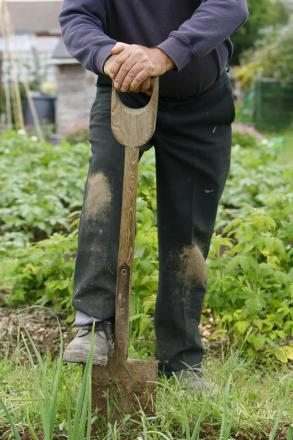 New allotments to be created in Rossendale