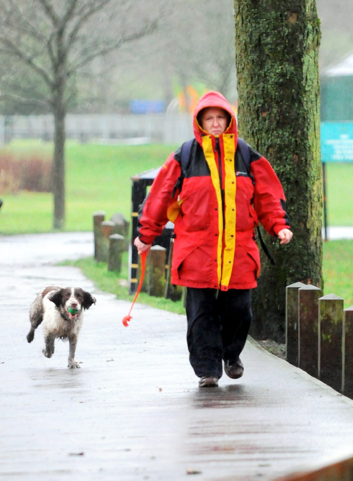 Blackburn with Darwen dog owners could face legal sanctions