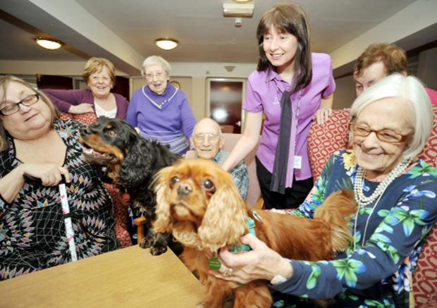 Scheme manager Catherine Gallagher introduces the dogs to residents Picture: Andy Mills