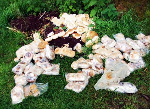 Lancashire Telegraph: The bread dumped in Greens Lane