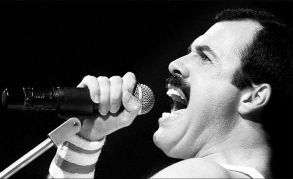 Scott Maley as Freddie Mercury