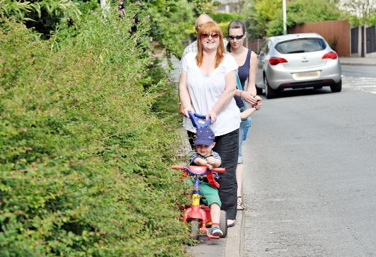 Carmelita Curtis with grandson Oakley, Hollie O'Brien with son Joseph and Coun Granville Morris with the overgrown hedges in Grane Road
