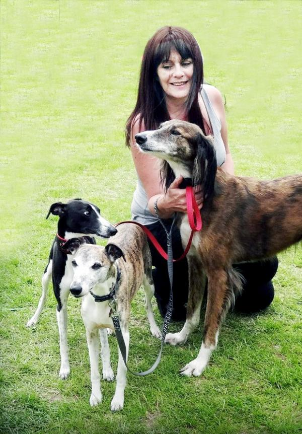 Summer a 'death sentence' for East Lancashire dogs
