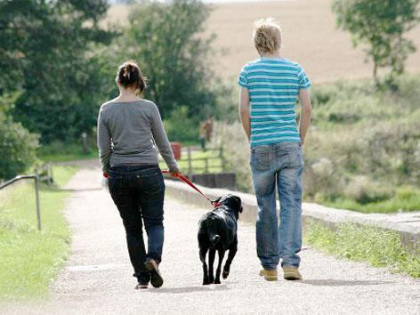 Ribble Valley dog owners' fury at orders