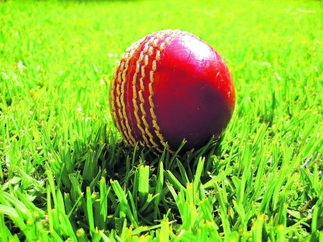 Cricket club 'fighting for its life' against plans to construct new housing estate
