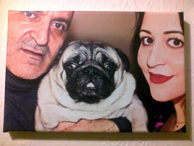 BELOVED PET: Sophoullis Kyriacou with Nikki and their dog Neville