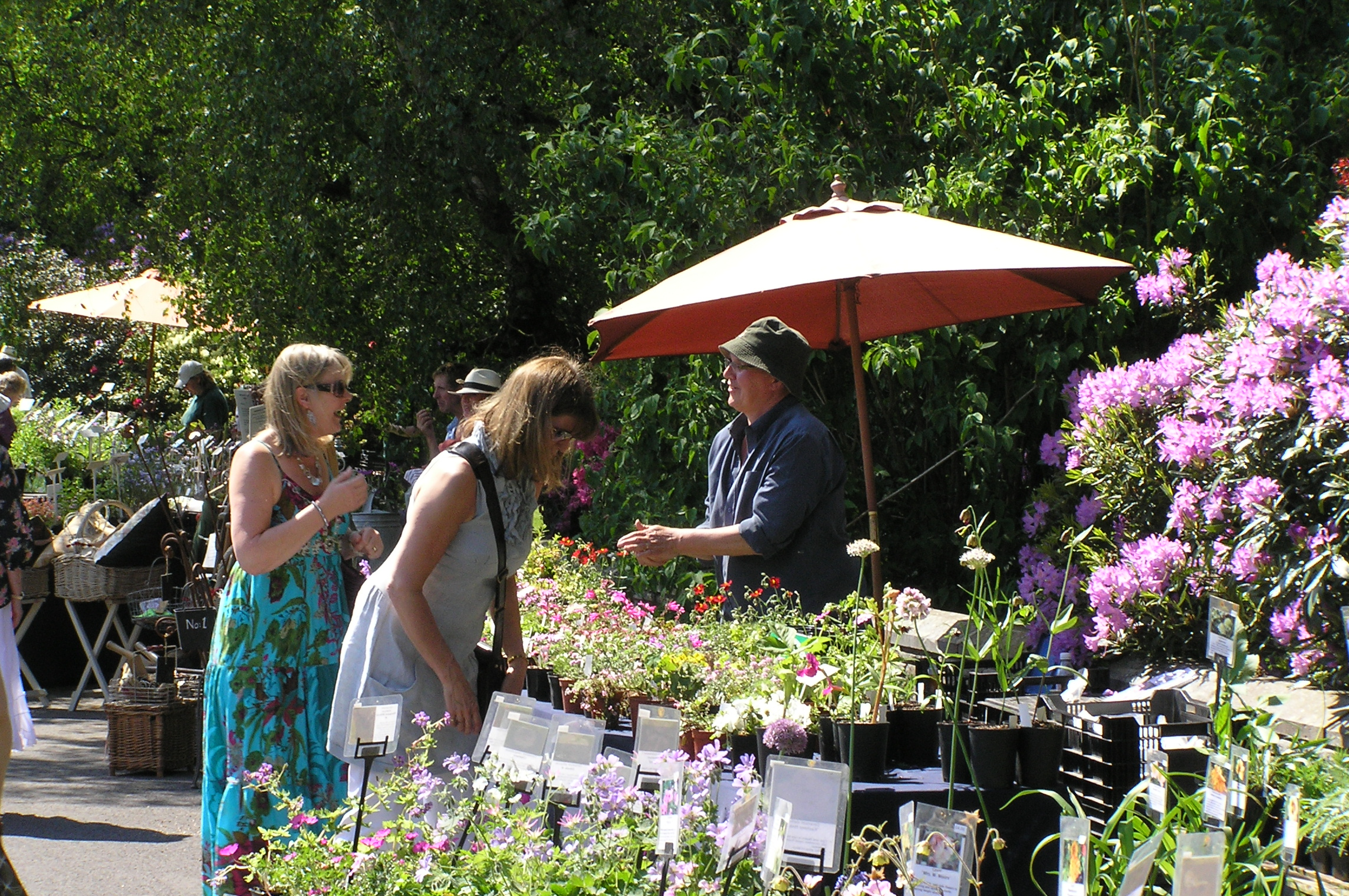 Specialist Plant Fair at Hoghton Tower