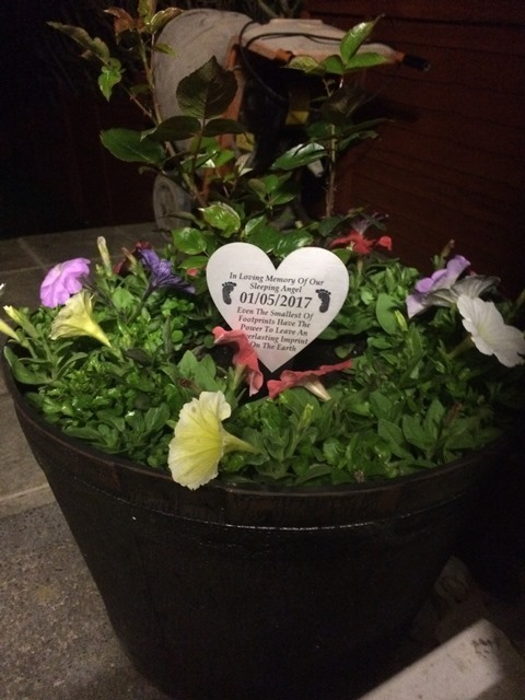 Stolen plant pot memorial to baby who died before full term is found & Stolen plant pot memorial to baby who died before full term is found ...