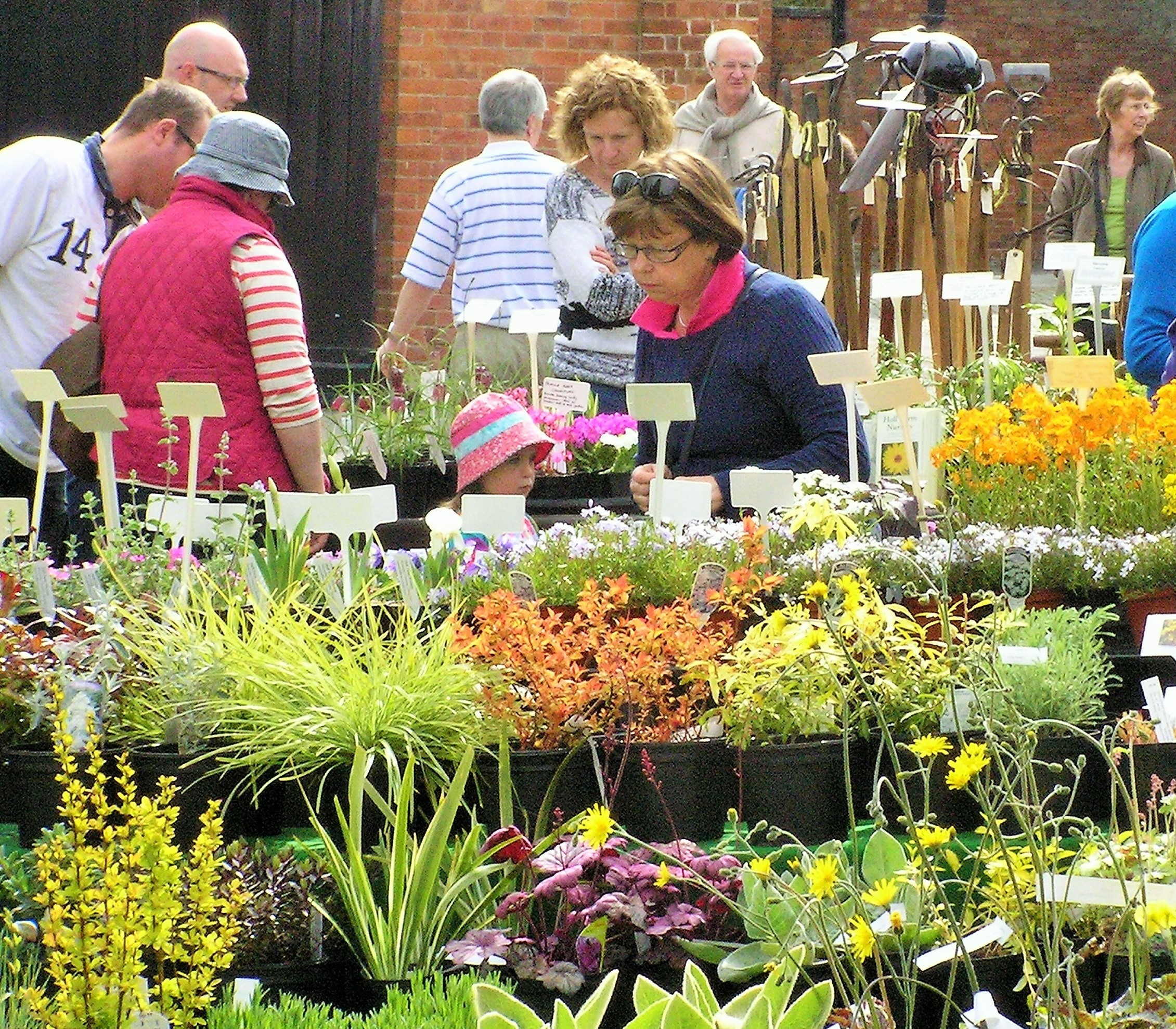 Plant Hunters' Fair at Hoghton Tower, Nr Preston on Saturday 7th April 2018