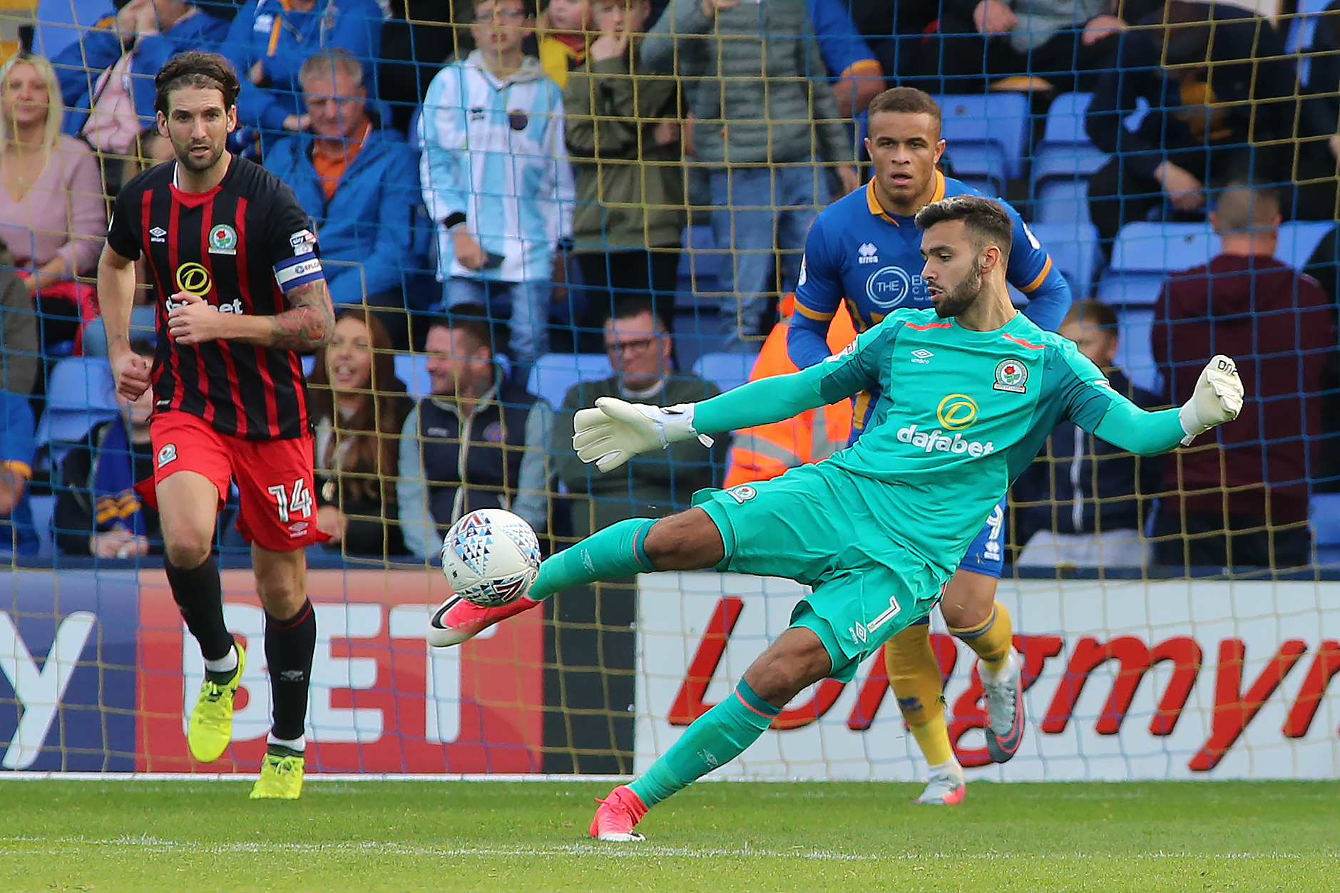 Everyone has a part to play in promotion push, says Rovers 'keeper David Raya
