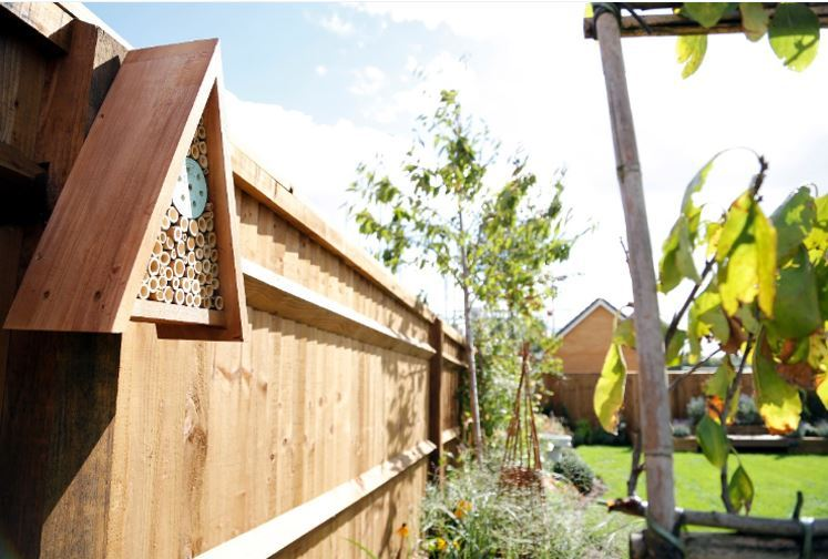 A wildlife friendly show home garden with an insect habitat