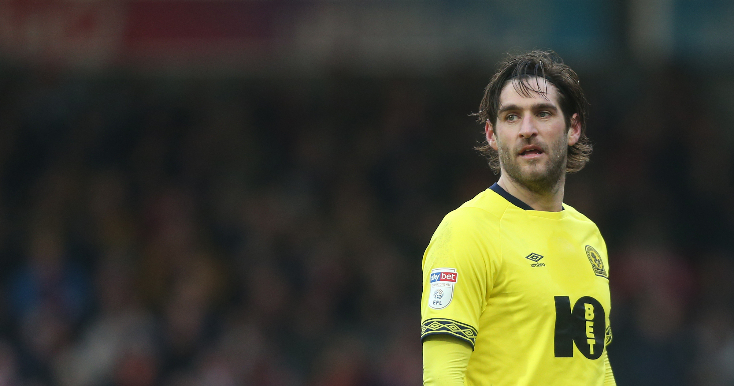 Danny Graham scoerd his 11th goal of the season against Brentford before coming off injured