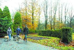 PARK LIFE: Memorial Park in Padiham which provides an oasis of green for the town